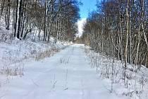 Tip na výlet -  Na běžkách kolem Milešovky