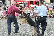 22. červen byl dnem policie a integrovaného záchranného systému. V Litoměřicích se slavilo ukázkami zásahů.