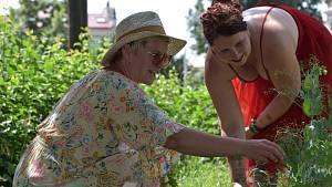 Symbolickou pásku komunitní zahrady přestřihli 15. června v Litoměřicích zahradnice i starosta Ladislav Chlupáč.