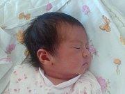 Nguyen Nha Uyen se narodil Tran Thi Lich a Nguyen Hai Hung  z Lovosic  17.7. v 13.23 hodin v Litoměřicích (2,93 kg a 47 cm).