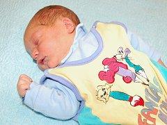 Dagmaře Pajmové a Michalovi Hulešovi z Litoměřic se 15.10. v 10.19 hodin narodil v Litoměřicích syn  Tobiáš Huleš. Měřil 52 cm a vážil 3,6 kg.