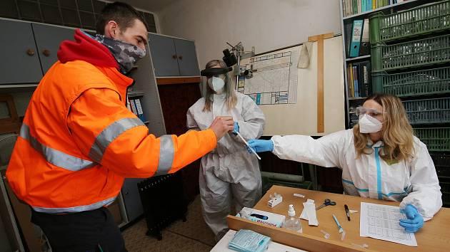 Testování na nákazu koronavirem ve firmách