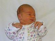 Elena Krejzová se narodila Karolíně Lukáškové a Luboši Krejzovi z Litoměřic 31.12. v 0.51 hodin v Litoměřicích.  Měřila 51 cm a vážila 3,24 kg.