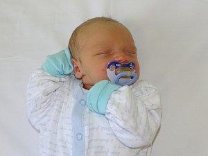 Nová miminka