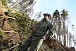 Pondělní vichřice zdecimovala část obecních lesů v Lovečkovicích.
