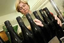 Svatomartinské víno v Roudnici.