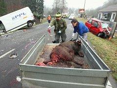 Střet auta s divočákem. Ilustrační foto.