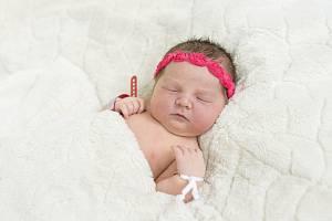 Laura Černá se narodila Kristýně Betkové a Romanu Černému z Račiněvsi 11.4. v 10.41 hodin v Roudnici n.L. (52 cm a 3,9 kg).