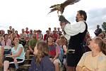 Sokolník Milan Straka ze Sychrova a Kosti předvedl poutavé vystoupení s dravými ptáky