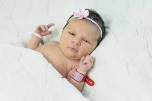Libuše Veselá se narodila Petře a Martinu Veselým z Roudnice nad Labem 28. listopadu 2018 v 22.24 hodin v Roudnici nad Labem. Měřila 48 cm a vážila 2,87 kg.