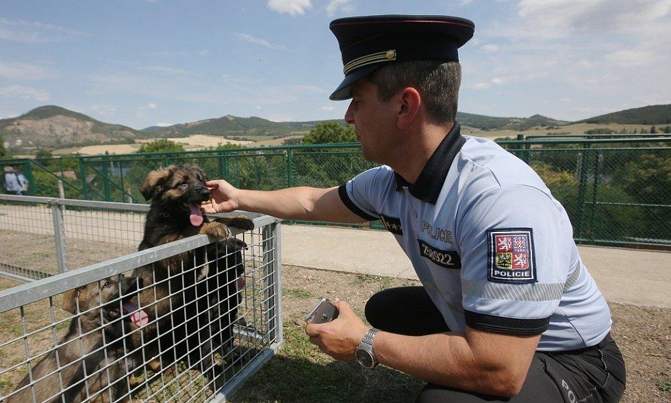 Chovná stanice služebních psů Policie ČR se po pěti letech opět přestěhovala zpět do Prackovic nad Labem.