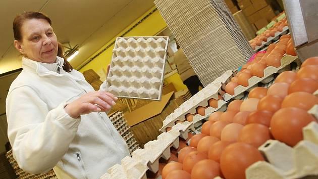 V libotenické drůbežárně na Litoměřicku třídí a balí vejce pro velikonoční trh. Slepičích vajec bude dostatek.