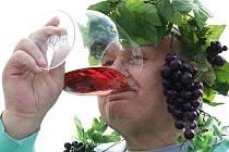 Vinobraní ve Velkých Žernosekách