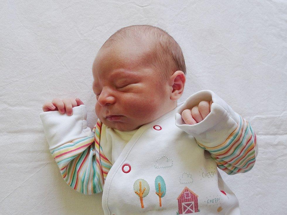 Otta Syka se narodil Lence Maternové a Ottovi Sykovi z Teplic 15. září v 10.43 hodin v Litoměřicích (52 cm a 3,7 kg).