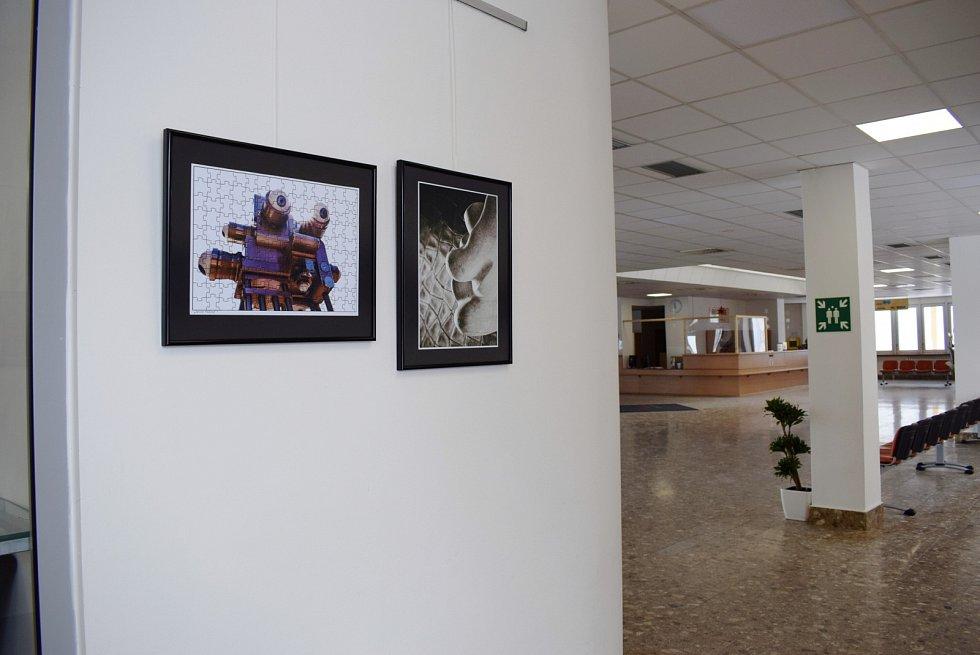 V hale litoměřické nemocnice je k vidění další nová výstava fotografa Miroslava Zimmera.