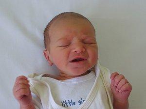 Nela Bejdová se narodila Andree Křížové a Michalu Bejdovi z Třebenic  15.4. v 19.59 hodin v Litoměřicích (2,80 kg a 49 cm).