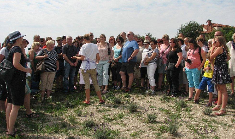 Pozvání manželů Anny a Petra Nových z levandulové farmy v Židovicích přijalo několik stovek nadšenců.