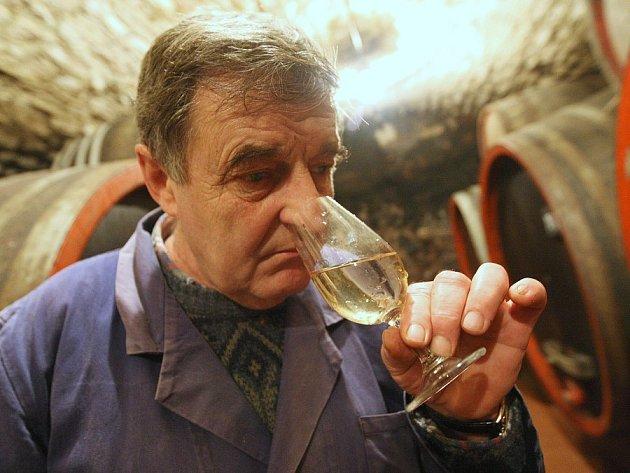 Sklepmistr litoměřických Klášterních vinných sklepů Vladimír Šuhájek degustuje bílé víno odrůdy Rulandské šedé ročník 2008. Podle něj se letošní vína vydařila.