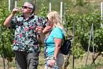 Putování za vínem ve vinici vinařů z Malých Žernosek