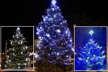 To jsou oni. Králové mezi letošními vánočními stromy na Litoměřicku. Z Roudnice, Libochovic a Chotěšova
