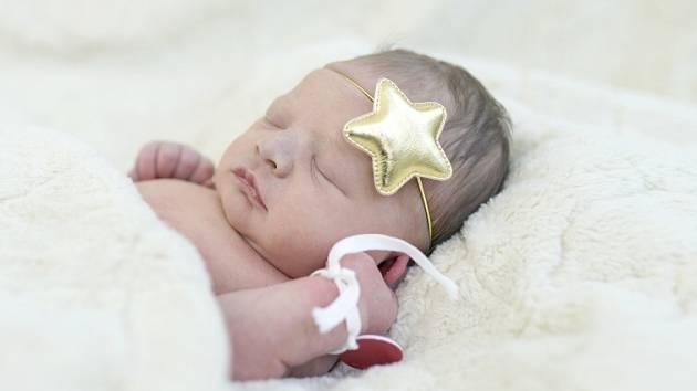 Viktorie Marešová se narodila Karolíně Beljajevové a Davidu Marešovi z Litoměřic 23.3. v 23:55 hodin v Roudnici n.L. (3 kg a 48 cm).