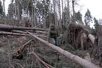 Takto vypadaly po řádění Kyrillu lesy pod vrchem Sedlo na Úštěcku.  Škody tam sčítal také revírník  Dušan Zikmund (na snímku).  Práce na odklízení popadaných  stromů trvaly pět měsíců.