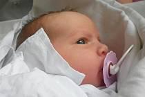 Renatě a Oldřichu Pokorným z Černěvse se v pražské porodnici 7. července v 11.00 hodin narodila dcera Vlasta Pokorná. Měřila 50 cm a vážila 3,80 kg. Blahopřejeme!