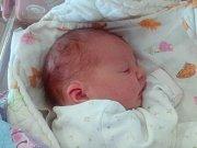 Barbora Boudová se narodila   Barboře a Martinu Boudovým z Úpohlav  19.7. v 9.25 hodin v Litoměřicích (3,32 kg a 50 cm).