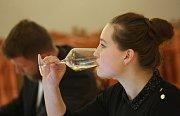 Degustace vín pro Vinařské Litoměřice 2017.