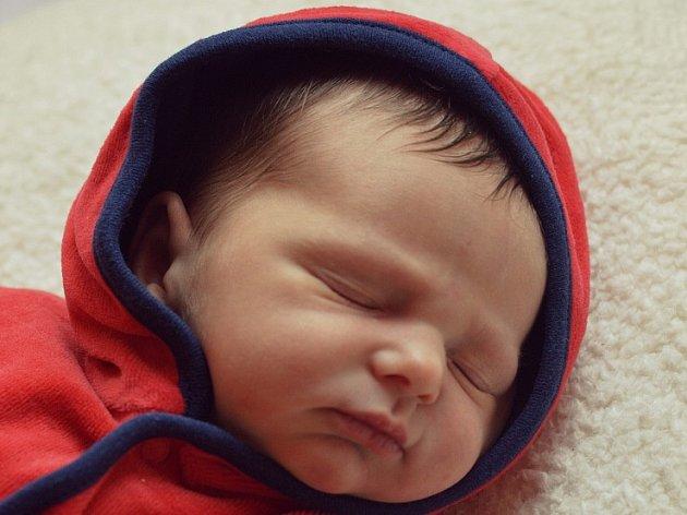 Janě Heuschneiderové a Stanislavu Polívkovi se 10.12. v 8:53 hodin narodila v Roudnici n.L. dcera Alice Polívková (2,99 kg a 50 cm).