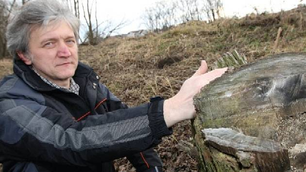 Vedoucí litoměřického odboru životního prostředí Pavel Gryndler je přesvědčen, že několik dřevin na Písečném ostrově bylo pokáceno v souladu se zákonem. Na základě žaloby, kterou podali aktivisté, se tu zatím stavět nemůže.
