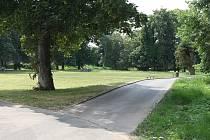 Kromě dalších úprav chystá město Lovosice i novinky v lesoparku Osmička (na snímku).