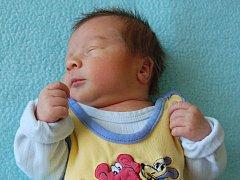 Andree a Michalovi Kalíkovým ze Štětí se 9.5. v 13.14 hodin narodil  v Litoměřicích syn Tomáš Kalík (48 cm, 3,17 kg).