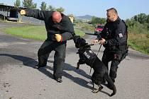 Terezín, policie a vězeňská služba cvičily zadržení uprchlého vězně.