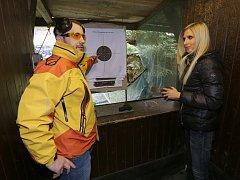 ZÁSAH DO ČERNÉHO. Pavlína Rybářová (na snímku) zkoušky na zbrojní průkaz zvládla včetně praktické části na výbornou.