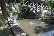 Slepé rameno řeky Labe v Litoměřicích je vlivem nízké hladiny poloprázdné. Na březích zahnívají zbytky odpadu. Rameno silně zapáchá a odrazuje návštěvníky ostrova.