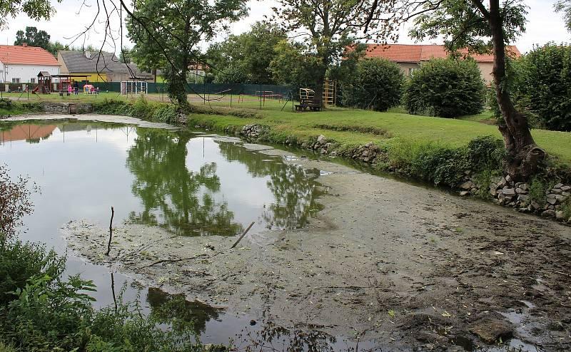 Rybník za základní školou čeká na revitalizaci. Kvůli spodní vodě to zatím není možné.
