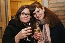 Zimní košt vín se konal ve sklepení pod Pfannschmidtovou vilou v Lovosicích.