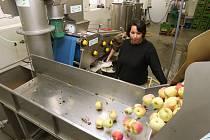 Moštárna společnosti LoPe Fruit Šepetely je v provozu třetí sezonu. Vybavena je moderní technologií včetně pasterizačního přístroje, který mošt ohřeje na 80 stupňů Celsia.
