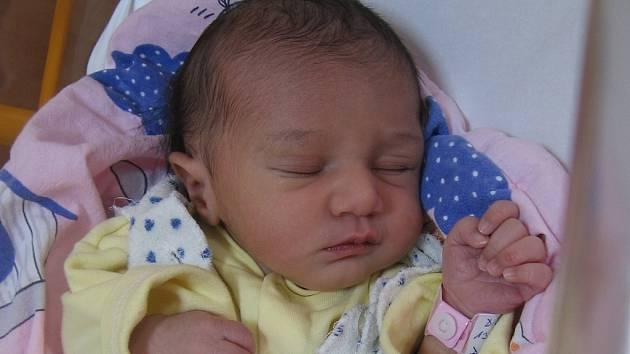 Denise Dirdové a Miroslavu Mikovi ze Štětí se 13.12. narodila  v Mělníku dcera Tamara Dirdová (46 cm, 2,42 kg).
