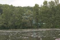 Zvýšená hladina Labe v Litoměřicích. V pozadí za stromy je tobogán na koupališti.
