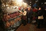 Rozsvícení vánočního stromu ve Štětí