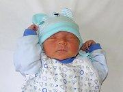 Daniel Adámek se narodil Michaele Adámkové  a Denise Voborníkové z Litoměřic 20.3.  v 10.16 hodin v Litoměřicích (3,72 kg a 53 cm).