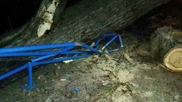 U Polep spadl v noci na silnici mohutný topol