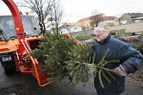 Likvidace vánočních stromků v Lovosicích.
