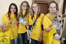 ČESKÝ DEN PROTI RAKOVINĚ se uskutečnil 13. května také v Litoměřicích. V ulicích města si lidé mohli koupit kytičku na podporu boje proti této zákeřné nemoci.