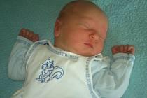 Janě a Vítovi Hojdarovým z Litoměřic se 29. dubna v 13.06 hodin narodil v Litoměřicích syn Dominik  Hojdar. Měřil 49 cm a vážil 3,15 kg.