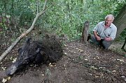 Pytlák řádil poblíž obce Tlučeň na Litoměřicku. Do lesa důmyslně nastražil pytlácké oko ze silného ocelového lanka. Do této pasti se chytla bachyně divokého prasete.