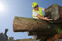 Dřevo na opravu krovů Kalicha dorazilo na litoměřické náměstí.