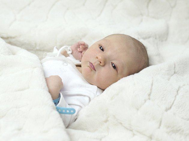 Tomáš Kapoun se narodil  Lucii Krajíčkové a Martinu  Kapounovi z Roudnice n.L. 22.11. v 5:28 hodin  v Roudnici n.L. (51 cm a 3,2 kg).